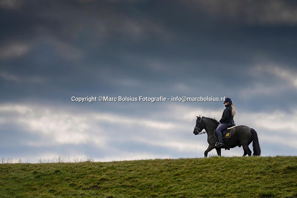 Nederland,  Hurwenen, Ingrid met paard op de dijk.