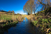 The brook flowing again after heavy rain at Swinbrook near Burford in The Cotswolds, Oxfordshire, United Kingdom