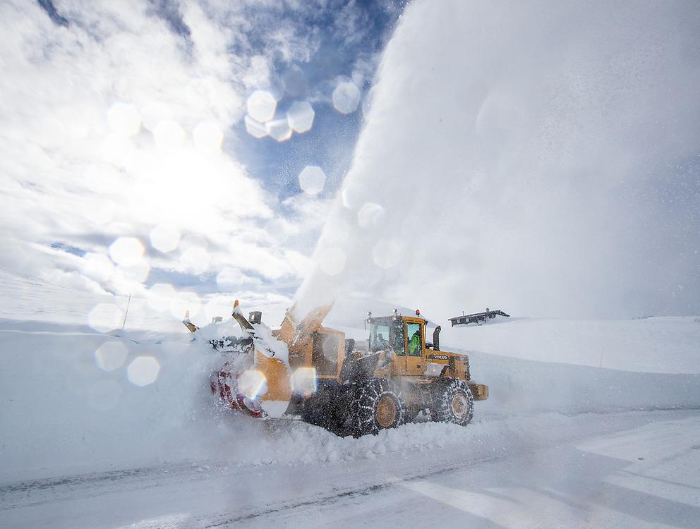 Fresing. Vikafjellet FV 60. Stokkebø Maskin AS. Hjulaster. Vinter. Drift. Foto: Jørn Søderholm