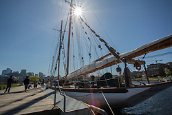 North America, United States, Washington, Seattle, Lake Union, Lake Union Park and Zodiac sailing schooner