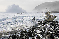 Waves breaking against the rugged coastline of the Tsitsikamma Marine Protected Area, Garden Route National Park, Western Cape, South Africa