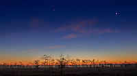 Big Cypress Swamp Dawn. Image taken with a Nikon D800 camera and 14-24 mm f/2.8 lens (ISO 100, 24 mm, f/8, 25 sec). Raw image processed with Capture One Pro 7.