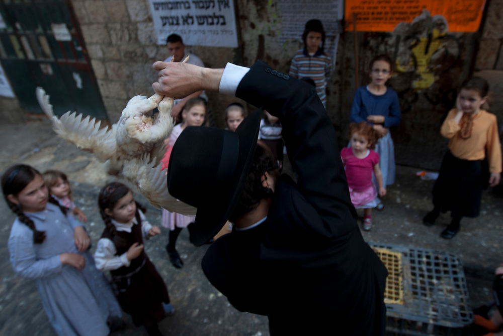 An ultra-Orthodox Jewish man swings a chicken, later to be slaughtered, over his head as part of the Kaparot ritual, ahead of the Jewish holiday of Yom Kippur in the neighborhood of Mea Shearim on September 15, 2010. Kaparot is a ritual connected to Yom Kippur, where chickens are slaughtered as a symbolic gesture of atonement, it is believed that one transfers one's sins from the past year into the chicken.