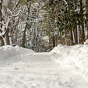 Snow covers the path through the woods at Loyola Retreat House