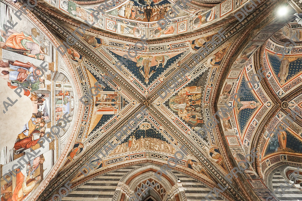 Ceiling detail of the Interior of one of the aisle of the Baptistery San Giovanni in Siena Italy