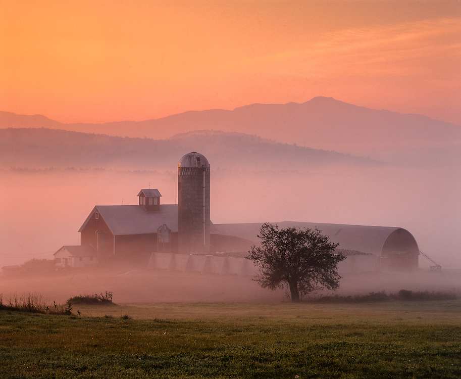 Barns & silo in early morning fog, pink misty color & Mt Mansfield in distance, Fletcher, VT
