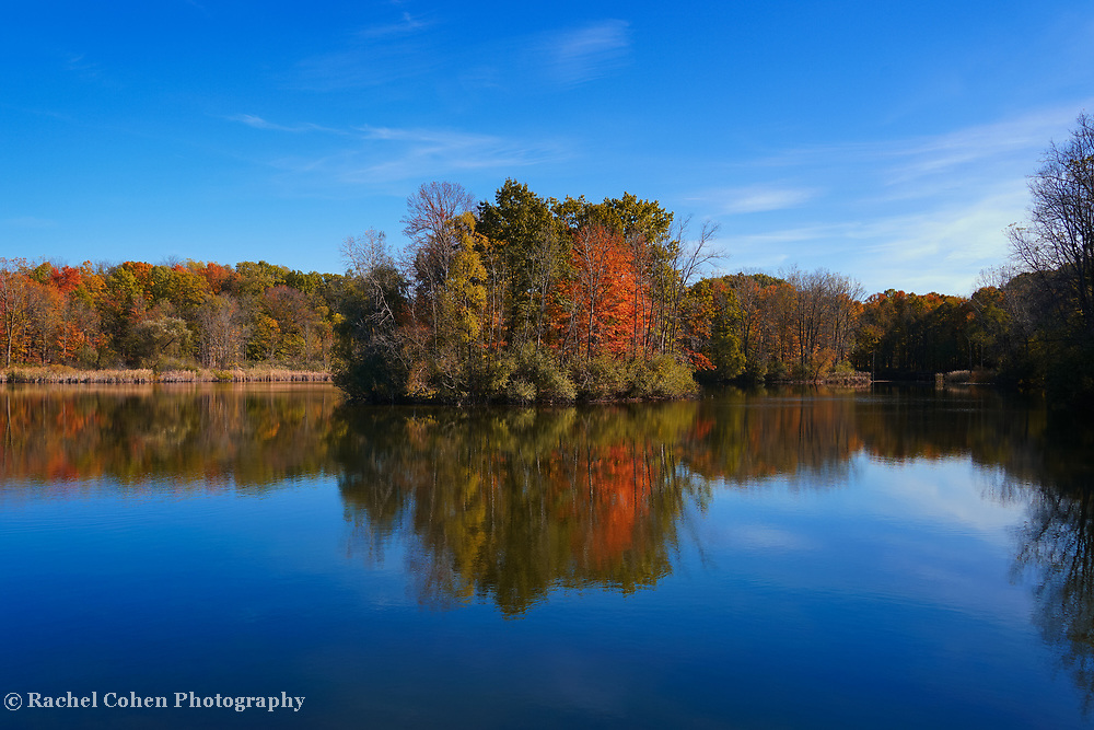 """""""Reflections of Maybury Autumn""""<br /> <br /> Gorgeous reflections of fall foliage and bright blue skies on the pond at Maybury State Park during autumn!"""