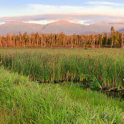 The Presidential Range as seen from Pondicherry National Wildlife Refuge in New Hampshire's White Mountains.