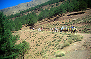 School group teenagers trekking in the Atlas Mountians near Imlil, Morocco