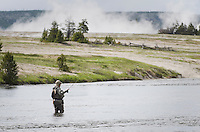 Fly fisherman testing his luck in the Firehole River in Yellowstone National Park Wyoming