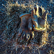 Work gloves on a couple of flakes of hay.
