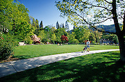 Image of Lithia Park in Ashland, Oregon, Pacific Northwest by Randy Wells