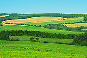 Rolling hills and farmland in the countryside<br />St. Gabriel-de-Rimouski<br />Quebec<br />Canada