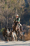 "On November 11, 2013, Lauren Bon leading a Veterans Day mule train parade in Glendale, California that is the last leg of a commemorative artist action called ""One Hundred Mules Walking the Los Angeles Aqueduct"", which was a month long, 240 mile journey from Owens Valley to Los Angeles that commemorates the 100 year anniversary of the opening of the Los Angeles Aqueduct. The action was created by Lauren Bon and Metabolic Studio with support from the Los Angeles Department of Water and Power (LADWP) and traversed the route of pipelines and canals that bring water from the Eastern Sierras through a gravity-fed system to Los Angeles, and which originally used mules to haul the equipment and pipes."
