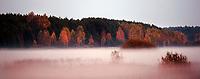 11.10.2014 gmina Narew N/z wieczorne mgly na lakch nad rzeka Narew fot Michal Kosc / AGENCJA WSCHOD