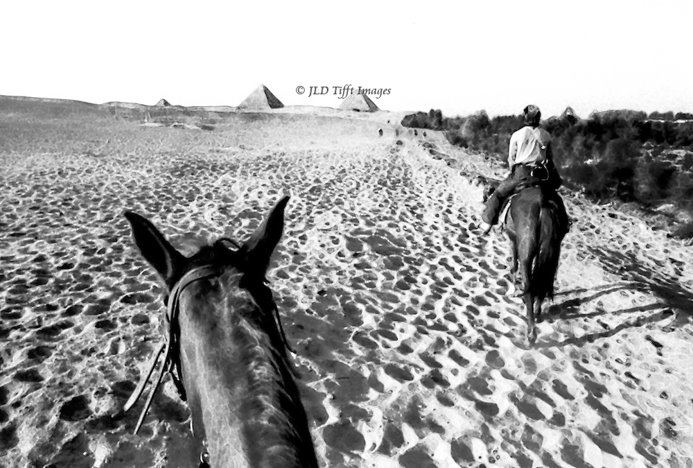 Pyramids on horseback: along the plantation/desert border.  Giza pyramids visible on the horizon.  Head of the photographer's horse, ears askew, in the foregound.  One additional rider ahead, silhouettes of others in the distance.  They are walking along the sharply defined border between the desert and the agricultural land.  Ink wash effect applied to grainy Tri-X negative.