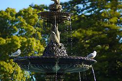 Espalhados por todas as partes de Auckland, os parque são uma características do País. O Victoria Park, situado em frente a uma universidade, também é freqüentado por pássaros que usufruem da fonte para se refrescar em uma ensolarada tarde de outono. FOTO: Lucas Uebel/Preview.com