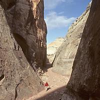 A hiker walks through Capitol Gorge in Utah's Capitol Reef National Park.