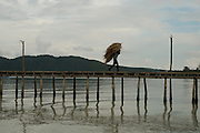 A man brings straw from a boat to a bungalow construction site, in Koh Rong Island, Kingdom of Cambodia. PHOTO TIAGO MIRANDA