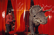 The robotic dinosaur Triceratops moves from the welding station where its base was attached to the recording studio where sound will be added to the computer program. Dinamation International, a California-based company, makes a collection of robotic dinosaurs. The dinosaurs are sent out in traveling displays to museums around the world. The dinosaur's robotic metal skeleton is covered by rigid fiberglass plates, over which is laid a flexible skin of urethane foam. The plates and skin are sculpted and painted to make the dinosaurs appear as realistic as possible. The creature's joints are operated by compressed air and the movements controlled by computer.