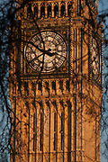 Branches of winter Plane trees in the foreground and the clockface containing the Big Ben bell in the Elizabeth Tower of the British parliament, on 17th January 2017, in London England. The Elizabeth Tower previously called the Clock Tower named in tribute to Queen Elizabeth II in her Diamond Jubilee year – was raised as a part of Charles Barrys design for a new palace, after the old Palace of Westminster was largely destroyed by fire on the night of 16 October 1834. The new Parliament was built in a Neo-gothic style. Although Barry was the chief architect of the Palace, he turned to Augustus Pugin for the design of the clock tower. It celebrated its 150th anniversary on 31 May 2009. The tower was completed in 1858 and has become one of the most prominent symbols of both London and England.