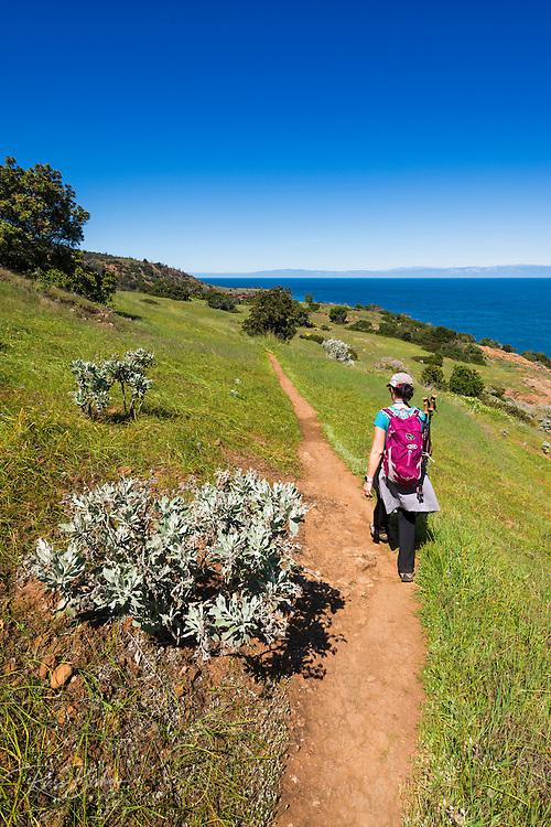 Hiker on the Pelican Bay trail, Santa Cruz Island, Channel Islands National Park, California USA