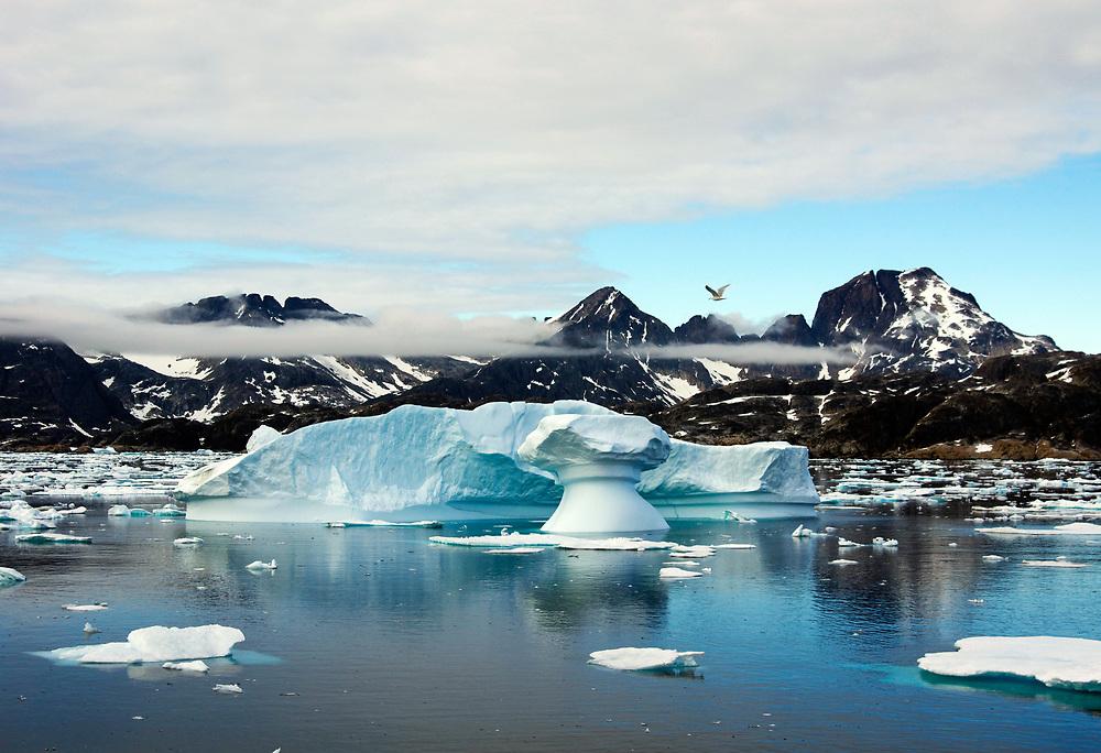 A Greenland shoreline. Photo by Adel B. Korkor.