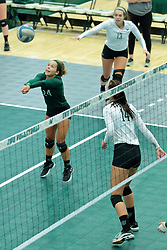 26 August 2017:  Taylor Krueger & Rachel Burkman during the green-white scrimmage of the Illinois Wesleyan Titans in Shirk Center, Bloomington IL
