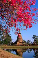 Thailande - <br /> Sukhothai province - Sukhotai - Wat Sa Sri