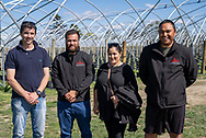 Maatutaera Akonga, Llewellyn Horticulture Limited, Brandon Cross, Seeka Limited, Finnisha Tuhiwai, Maugatapere Berries<br /> <br /> Finalists in the Young Maori Grower, Ahuwhenua Trophy<br /> Competition for Horticulture,  September 2020. Photo by alphapix.nz<br /> <br /> CONDITIONS of USE:<br /> <br /> FREE for editorial use in direct relation the Ahuwhenua Trophy competition. ie. not to be used for general stories about the finalist or farming.<br /> <br /> NO archiving of images. NO commercial use. <br /> Please contact John@alphapix.co.nz if you have any questions