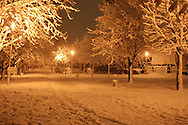 Snowy alley of Burgas park at night