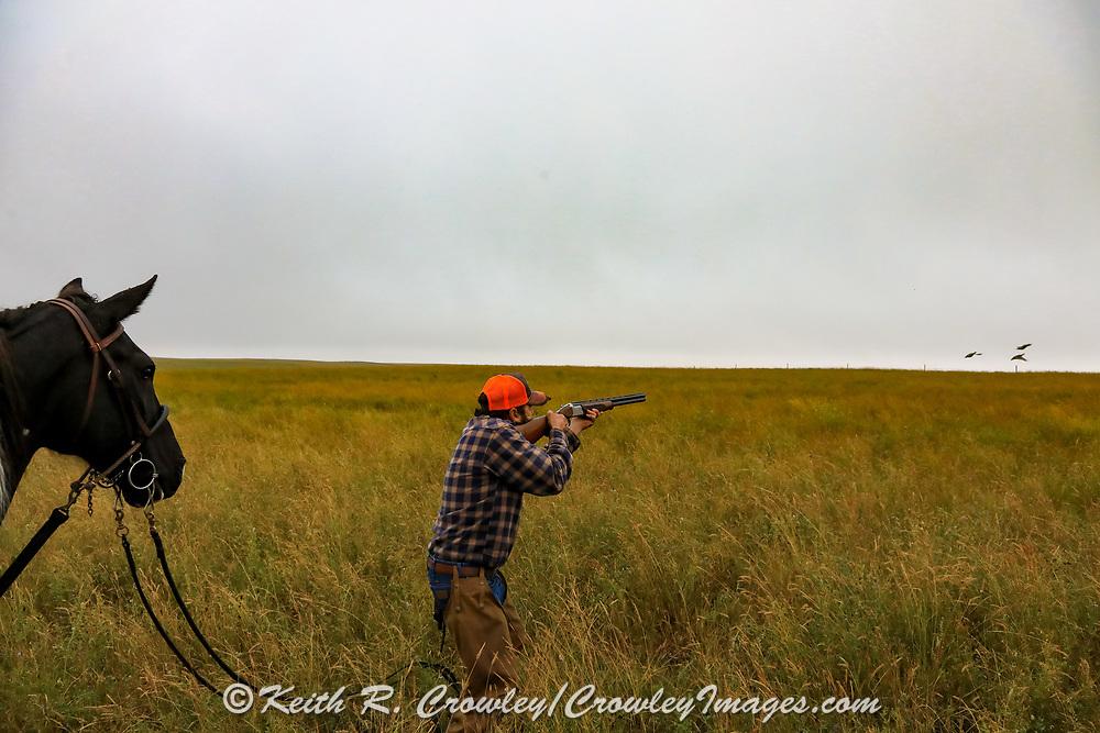 John Zeman, takes aim at rising sharptails during a Montana horseback grouse hunt.