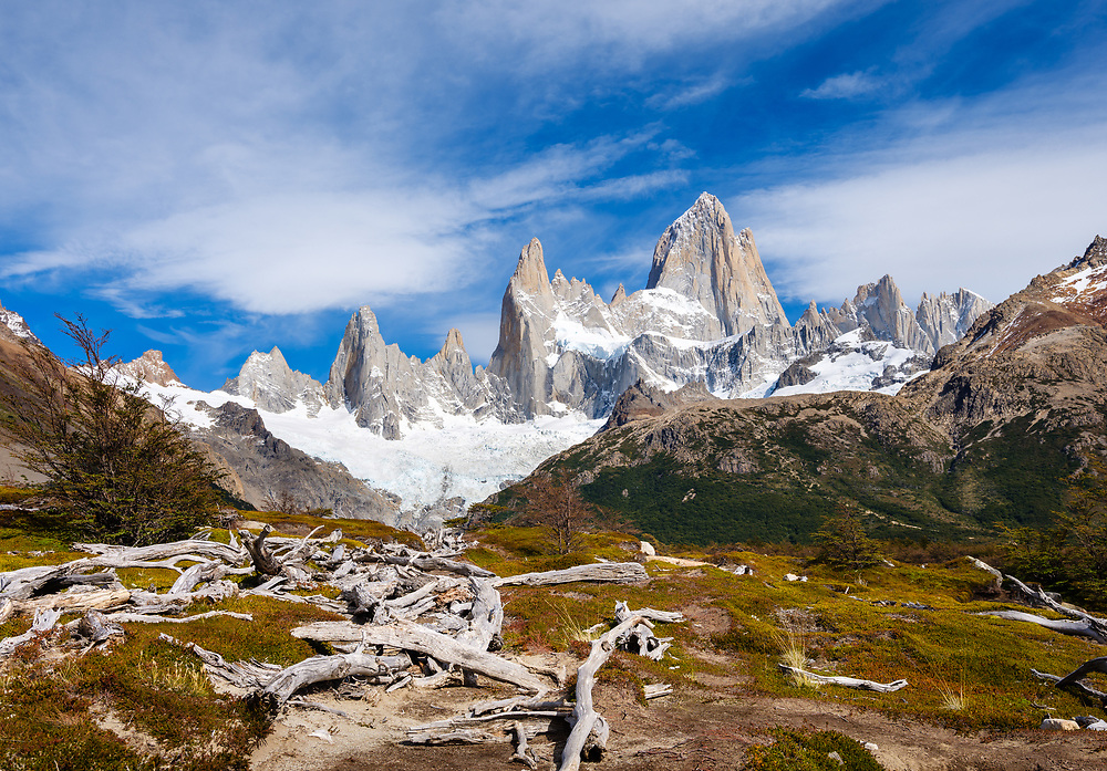 NATIONAL PARK LOS GLACIARES, ARGENTINA - CIRCA FEBRUARY 2019: Valley and dead trees in National Park los Glaciares in Argentina.