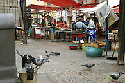 Guiseppe overlooks the front of his fish stand while one of his co-workers stands at the back. Nearby, several pigeons share in the joy of a full waterbucket. (Supporting image from the project Hungry Planet: What the World Eats.) The Manzo family of Palermo, Sicily, is one of the thirty families featured, with a weeks' worth of food, in the book Hungry Planet: What the World Eats.