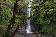 Shanfeng Waterfall,  Walami Trail, Yushan National Park, Taiwan