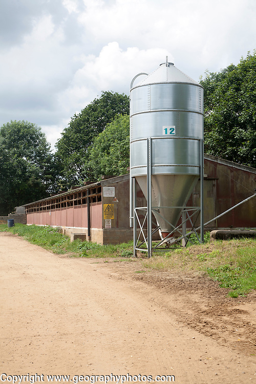 Steel feed silo on pig farm, Sutton, Suffolk, England, UK