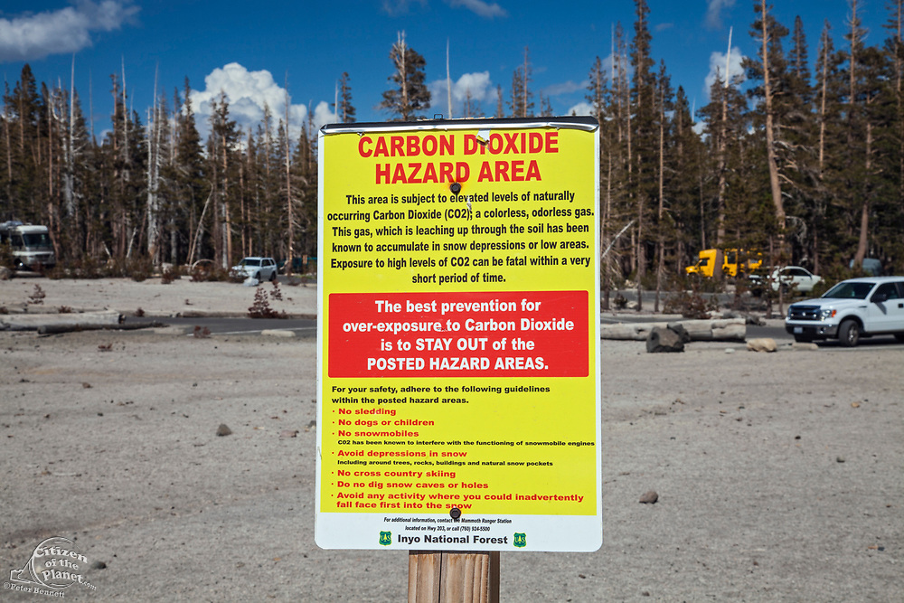 Carbon Dioxide Hazard Area warning sign. Dead trees around Horseshoe Lake. Higher than normal concentrations of CO2 are responsible for killing approx. 120 acres of trees next to Horseshoe Lake and elsewhere on Mammoth Mountain. Inyo National Forest, California, USA