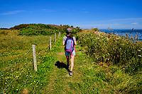 France, Manche (50), Cotentin, Omonville-la-Rogue, le Sentier Littoral ou GR223 // France, Normandy, Manche department, Cotentin, Omonville-la-Rogue, coastal path