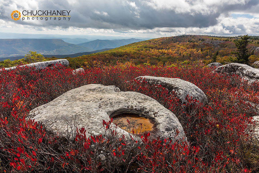 Bear Rocks in autumn in the Dolly Sods Wilderness,  West Virginia, USA