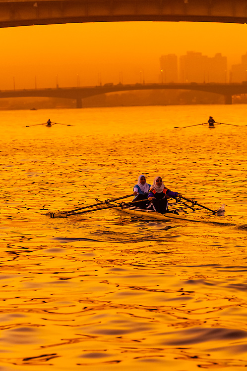 Women rowing a scull at sunrise on the Nile River, Cairo, Egypt
