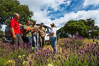 Campanarios de Azaba Biological Reserve, Salamanca, Castilla y Leon, Spain, Europe