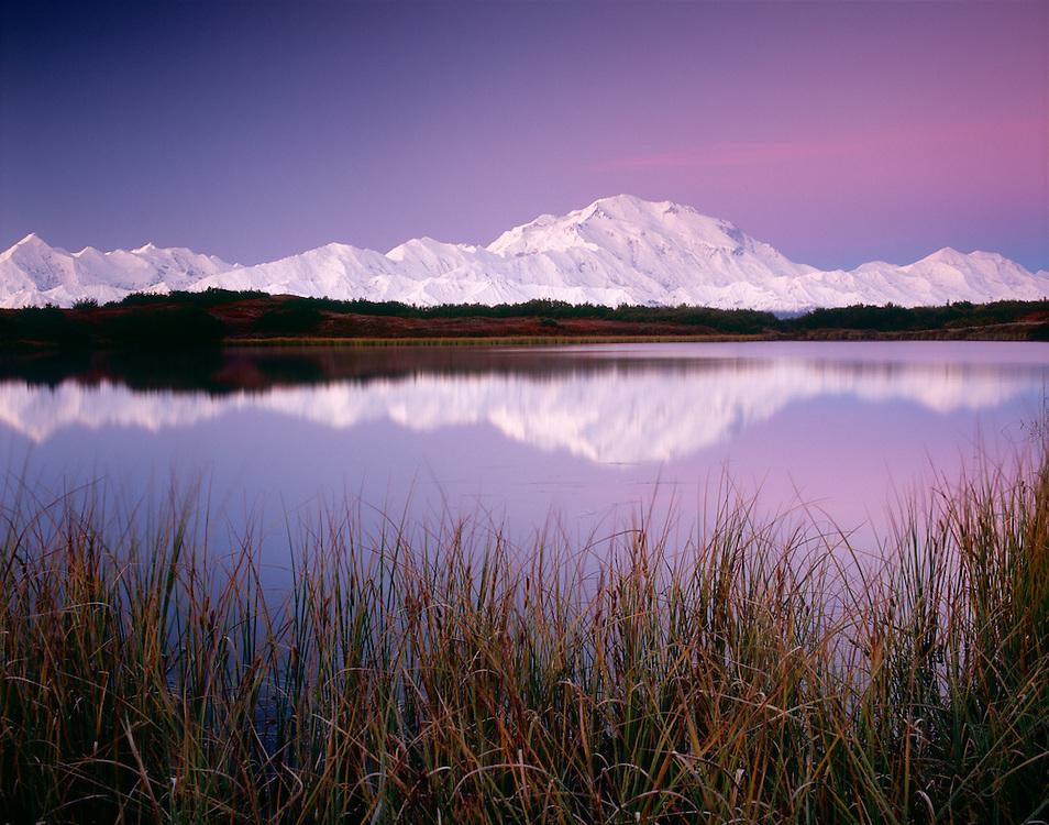 USA, Alaska, Denali NP, Denali (Mt McKinley) reflected in a pond at twilight