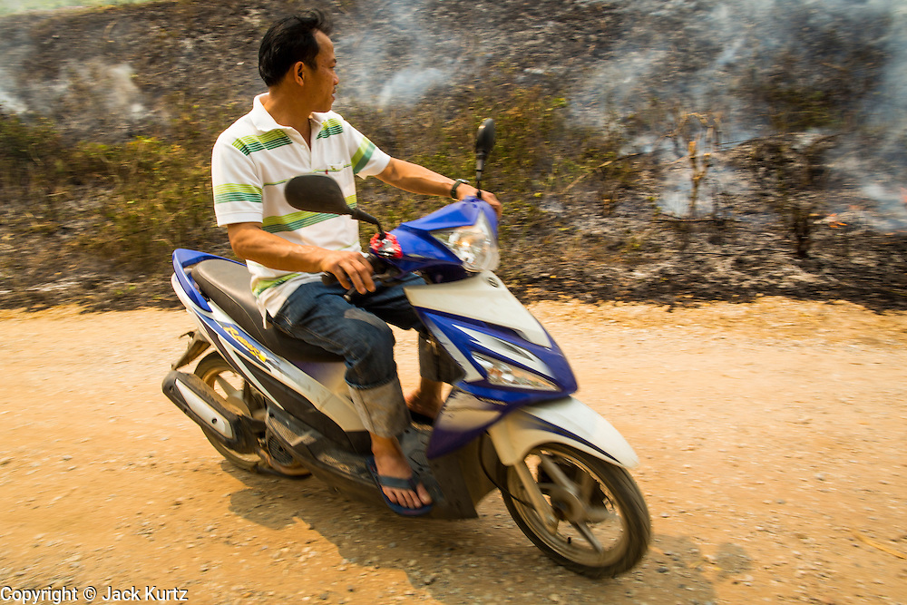 """09 APRIL 2013 - KHUNTAN, LAMPHUN, THAILAND:  A man rides his motorcycle past a grassfire buring out weeds in Khuntan, Lamphun province, Thailand.  The """"burning season,"""" which roughly goes from late February to late April, is when farmers in northern Thailand burn the dead grass and last year's stubble out of their fields. The burning creates clouds of smoke that causes breathing problems, reduces visibility and contributes to global warming. The Thai government has banned the burning and is making an effort to control it, but the farmers think it replenishes their soil (they use the ash as fertilizer) and it's cheaper than ploughing the weeds under.     PHOTO BY JACK KURTZ"""
