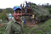 Catarino Tzub, 48, Mopan Mayan cacao grower and TCGA member since 2003, smiles as fellow community members help thatch the roof to his new home. Toledo Cacao Growers' Association (TCGA), San Jose, Toledo, Belize. January 25, 2013.