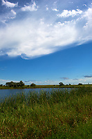 Midwest Summer Sky Panorama. Rest Area along Interstate 29 in South Dakota. Image 8 of 9 taken with a Nikon D3x and 24 mm f/1.4G lens (ISO 100, 24 mm, f/11, 1/800 sec).