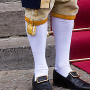 NLD/Amsterdam/201804245 - 20180424 koninklijke familie bij Corps Diplomatique diner 2018, uniform lakei schoenen met kousen