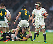 """Twickenham, United Kingdom.  Tom WOOD, """"pulled Up"""" by the referee's whistle, during the  Old Mutual Wealth Series match.: England vs South Africa, at the RFU Stadium, Twickenham, England, Saturday, 12.11.2016<br /> <br /> [Mandatory Credit; Peter Spurrier/Intersport-images]"""