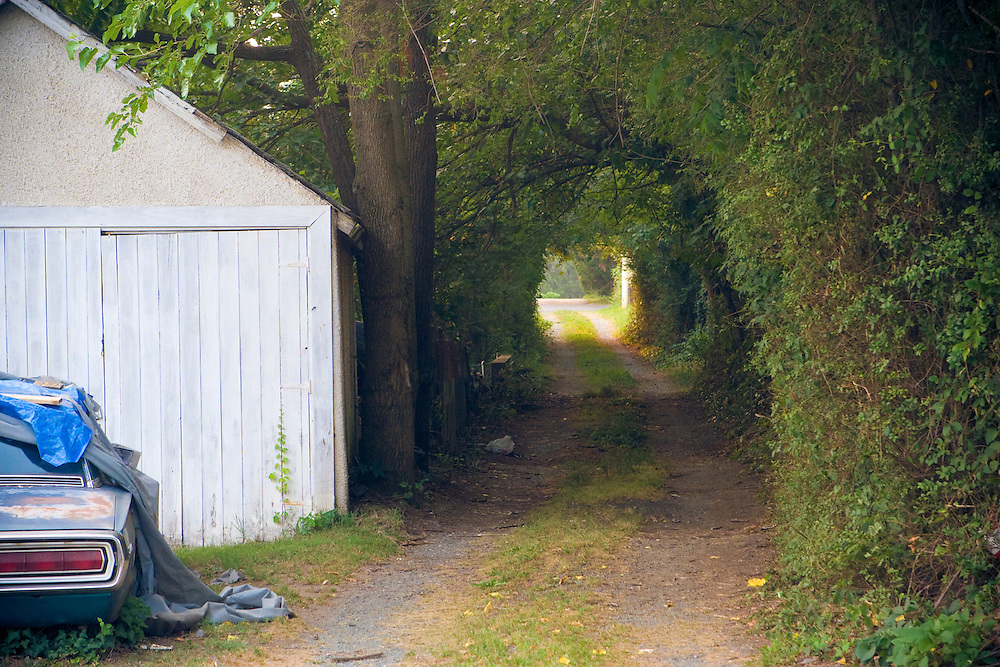 A two-lane path leads through an archway of trees to a distant, sunnier spot.  Taken in Charlottesville Virginia