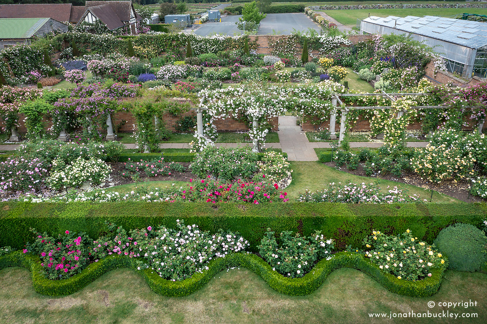 Aerial view of The Pergola Pathway and Lion Garden at The David Austin Rose Gardens
