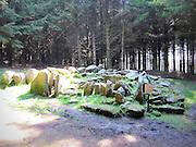 Ballyedmunduff Wedge Tomb, Dublin,
